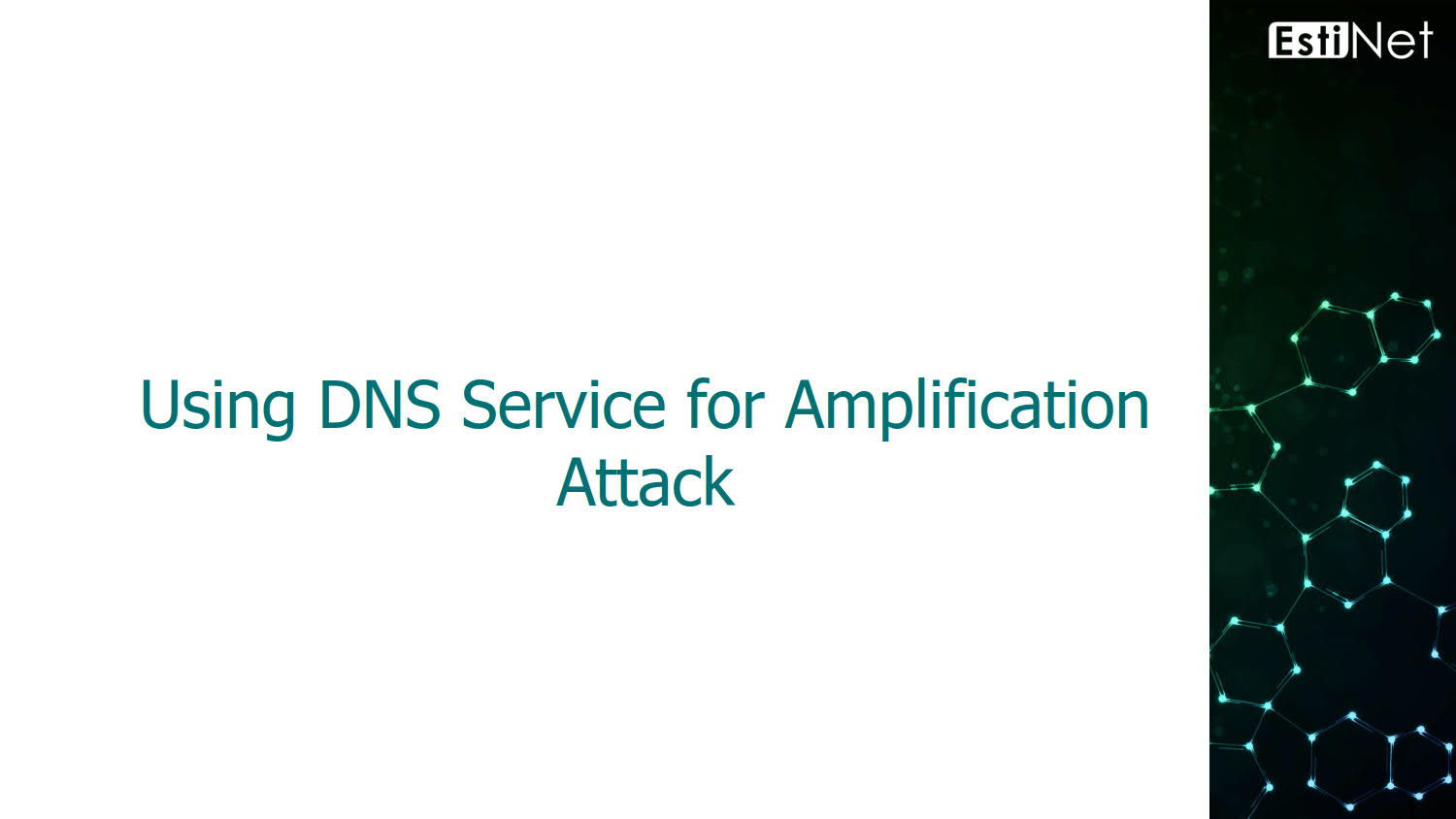 Using DNS Service for Amplification Attack_v1.0_20180726_01